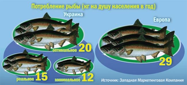 razvedenie-ryby